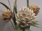 цветы из семян тыквы
