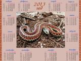 Календарь на 2013 год Символ года, змея с красной окраской