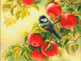 Райские яблочки. / Н-003