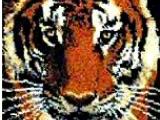 Панно Тигр
