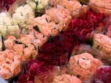 Розы для милых дам!!!
