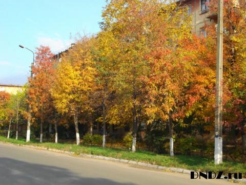 Осень. Днепродзержинск - Ольга Яковлевна Ширяева