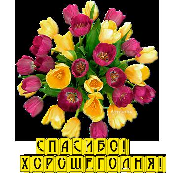 Спасибо! Хорошего дня! - Людмила Павловна Путилина