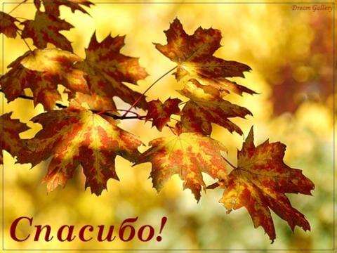Осеннее спасибо - Марина Юрьевна Горбачева