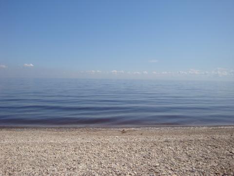 Озеро Ильмень Д.Коростынь Новгородская область - Любовь Николаевна Юдина