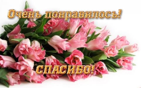Очень понравилось Спасибоя - Марина Юрьевна Горбачева