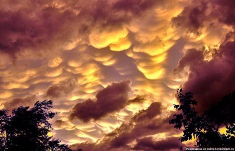 Вымеобразные облака - Вера Игоревна Иванова