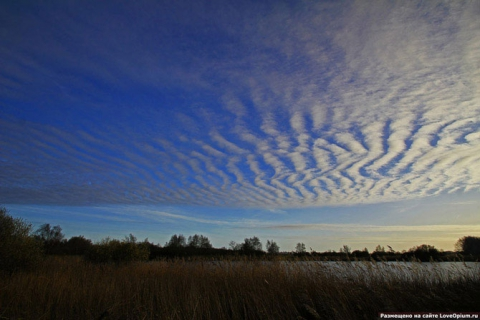 Волнистые облака - Вера Игоревна Иванова