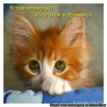 Без названия - Ольга Яковлевна Ширяева