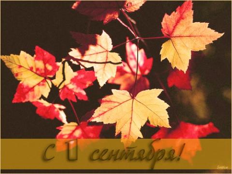 26 - Светлана Анатольевна Щедрина