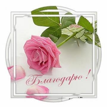 благодарю - Ольга Дмитриевна Шалимова