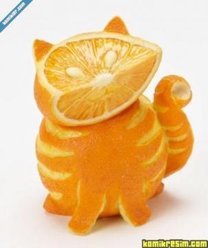 Апельсиновый кот - Раиса Поликарповна Трефилова