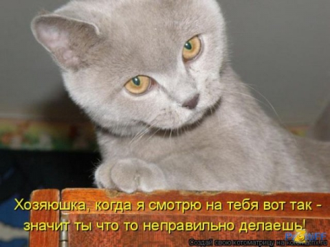Строгий учитель - Марина Анатольевна Аверина