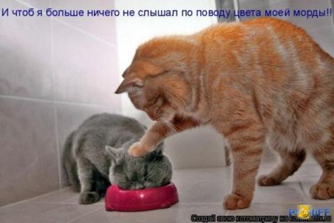 Воспитательная работа - Марина Анатольевна Аверина