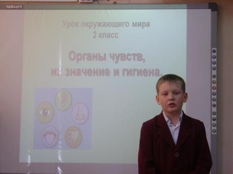 Рассказ об обонянии - Ольга Игоревна Баранцева