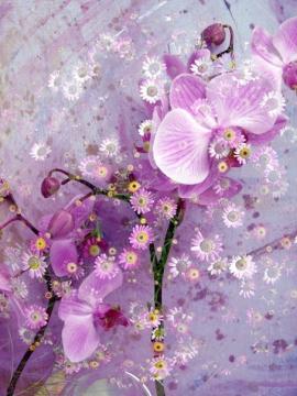 Фантазии с цветами