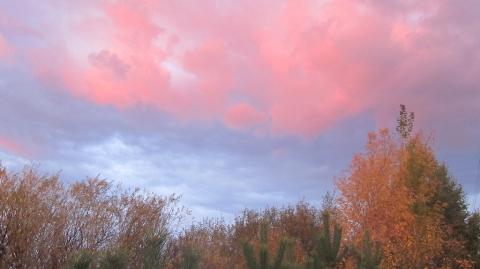 Сентябрь. Розовый вечер