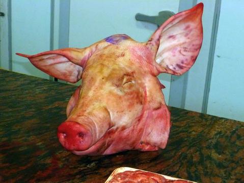 Свиная голова 3