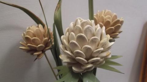 цветы из семян тыквы - Сообщество педагогов дополнительного образования