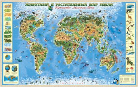 животный и растительный мир ЗЕМЛИ - плакат - Ольга Николаевна Козина
