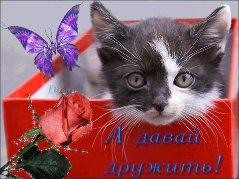 А давай дружить! - Ольга Владимировна Назарова