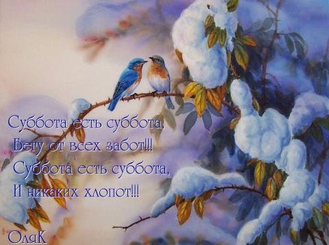 Суббота!!! - Ольга Николаевна Константинова