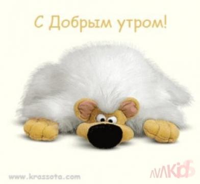 Доброе утро - Анна Витальевна Емелина