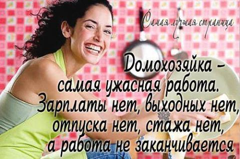 домохозяйкам - Татьяна Викторовна Носова