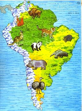 Южная Америка - Алена Витальевна Свистунова