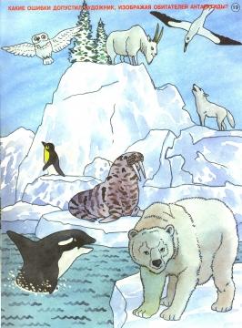 Антарктида - Алена Витальевна Свистунова