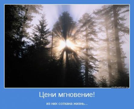 Мгновение прекрасно! - Ольга Сергеевна Теплоухова