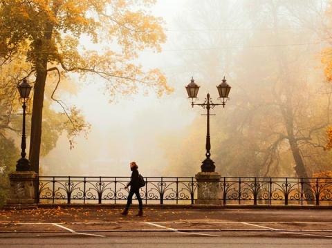 Кружево оград и фонарей - Марьяна Федоровна Рженичева