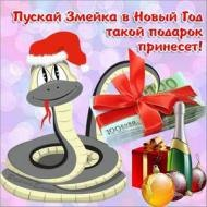пускай змейка в новый год, такой подарок принесет!