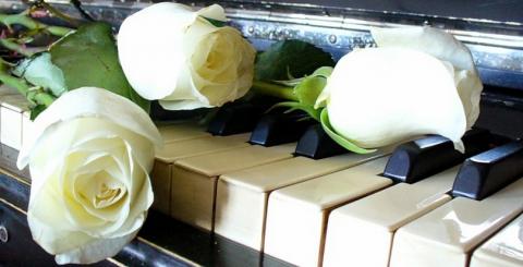 Розы на клавиатуре.