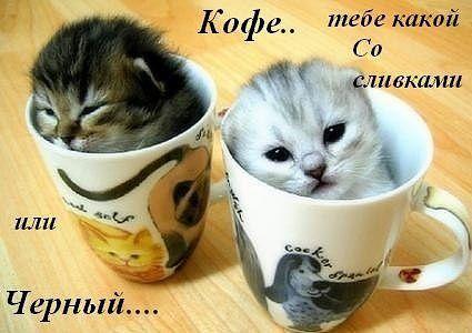 Кофе. Тебе какой со сливками или чёрный)))