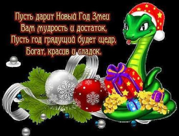 Год Змеи - Наталья Николаевна Волошина
