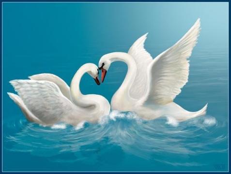 Учитесь верности у лебедей! Любите так, как любят эти птицы! Ведь если взять вселенную, ни с чем... Любовь такая не сравнится.
