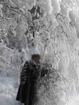 Мороз (-28) - Тамара Николаевна Панфёрова