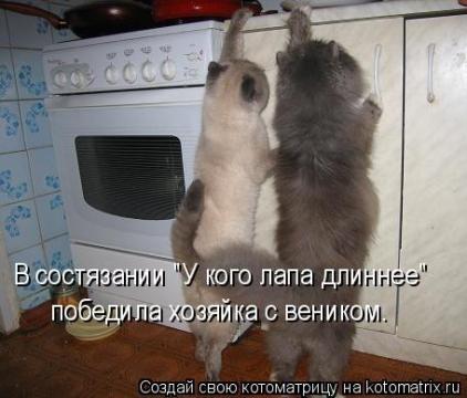 Хозяйка с веником) - Ирина Валентиновна Ермакова