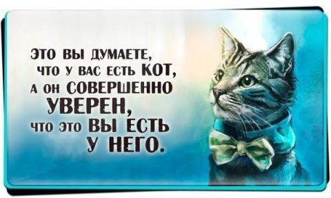 Кто у кого? - Ирина Валентиновна Ермакова