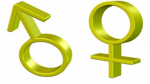 символ мужского пола, символ женского пола в биологии - Раиса ...