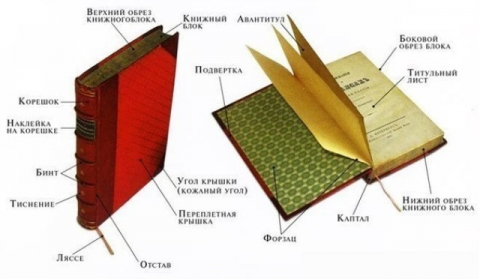 как-устроена-книга - Юлия Викторовна Синягина