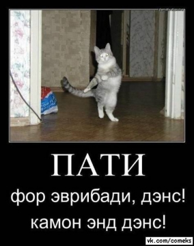 Пати)))