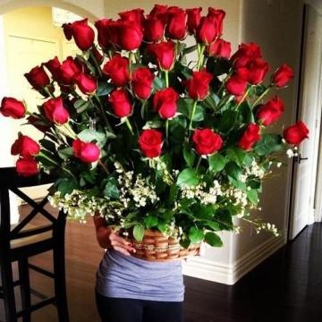 Розы, розы, розы!