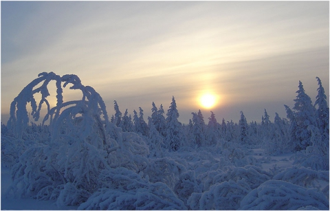 Наша зима - Татьяна Семеновна Габышева