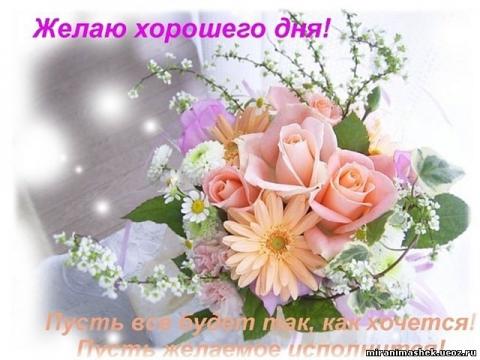 Желаю хорошего дня