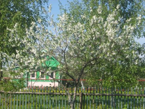 Деревенская весна - Галина Ивановна Куколева